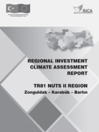REGIONAL INVESTMENT CLIMATE ASSESSMENT REPORT