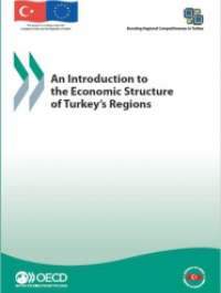 An Introduction to the Economic Structure of Turkey's Regions