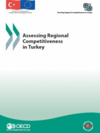 Assessing Regional Competitiveness in Turkey